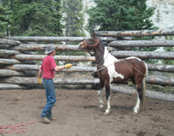 Jerry Tindell's Horsemanship Clinic - Outpost at Warden Rock