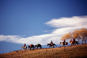 Horseback Vacation Package