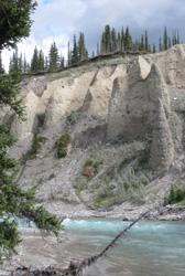 Wildlife and Heritage Retreats
